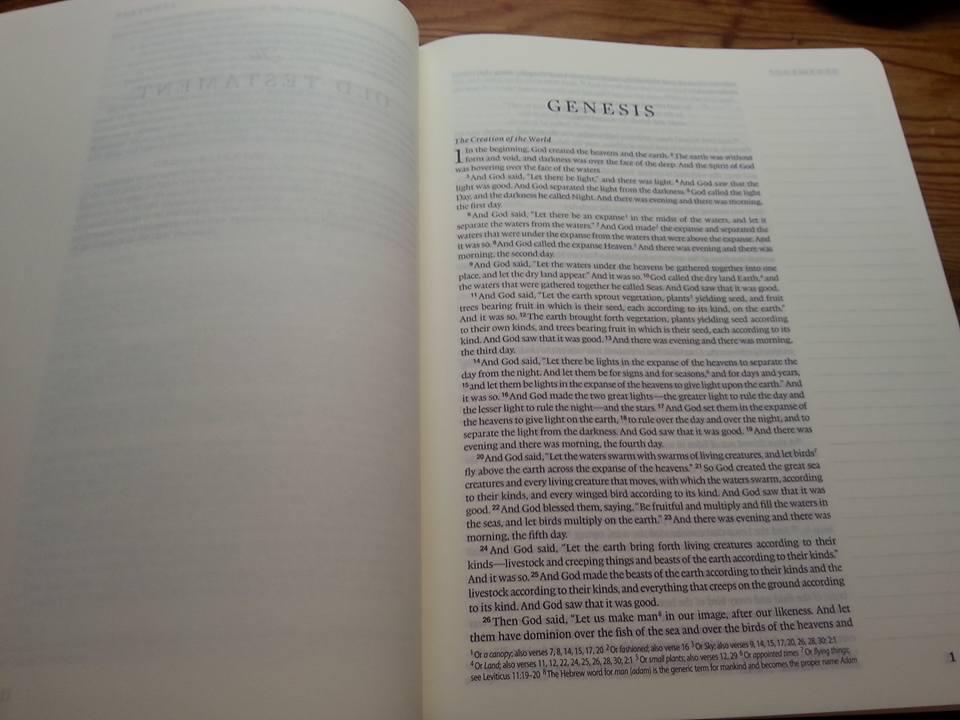 Bible - Mine - Genesis - Blank
